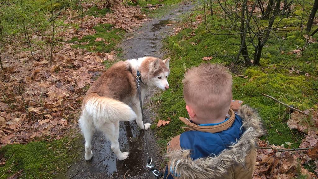 Samen over het bospad