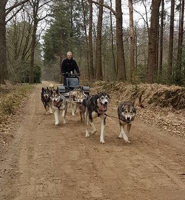 Team onderweg