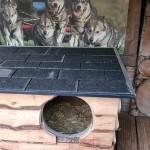 Chibewyan Dog House